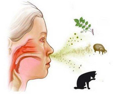 Причини алергії