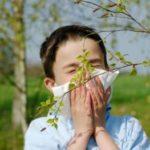 192 Список популярних алергенів
