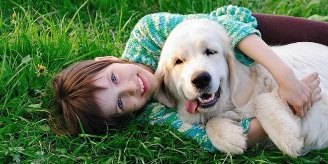 20561 - Алергія у дитини на тварин