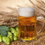511 Ознаки, наслідки та лікування пивного алкоголізму