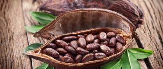 49542 330x140 - Корисні властивості і застосування какао-бобів