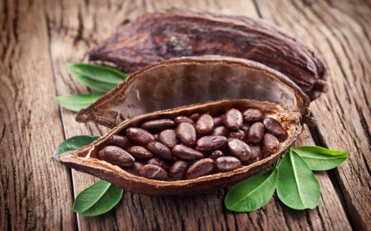 2965 Корисні властивості і застосування какао-бобів